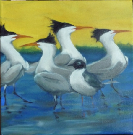 elegant terns dancing