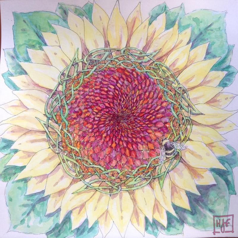 20170212-sunflower-spirals
